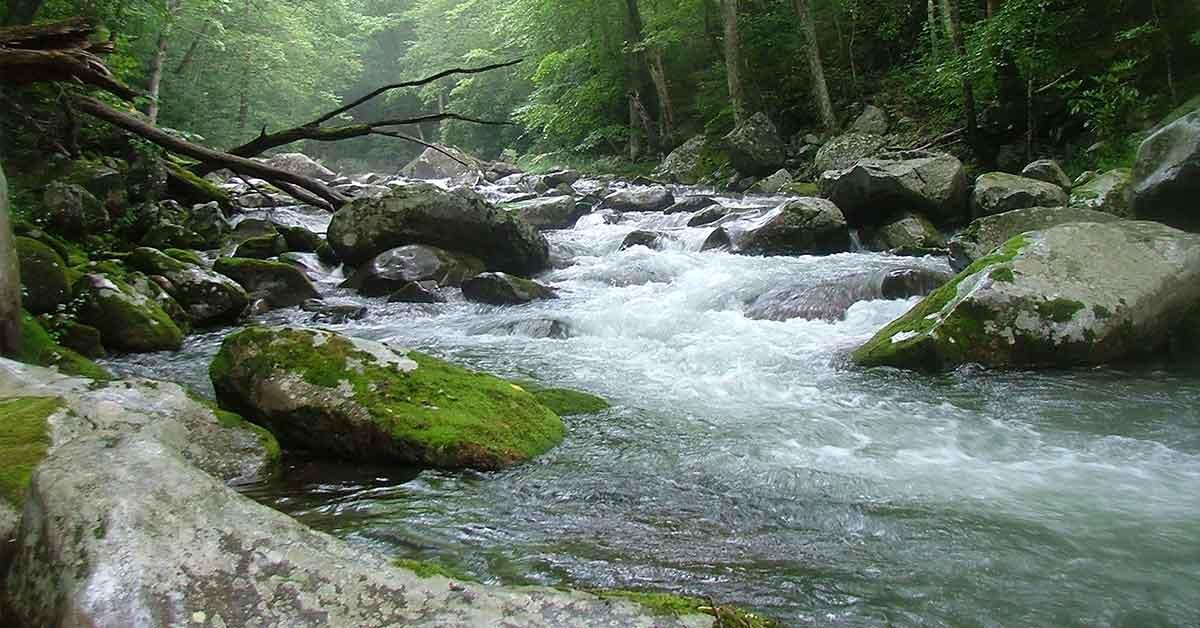 Big Creek< Harwood NC.